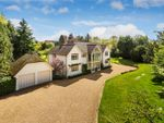 Thumbnail for sale in Farley Green, Albury, Guildford, Surrey