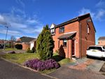 Thumbnail to rent in Sidmouth Close, Seaham, County Durham