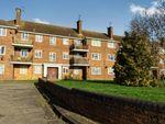 Thumbnail for sale in Plumtree Lane, Leighton Buzzard, Bedfordshire