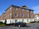 Thumbnail to rent in Jago Court, Newbury