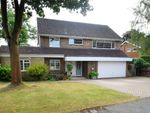 Thumbnail for sale in Merrywood Park, Camberley, Surrey