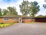 Thumbnail to rent in Windrush Heights, Sandhurst, Berkshire