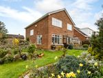 Thumbnail for sale in Hill View, York, North Yorkshire