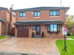 Thumbnail for sale in Maplewood, Skelmersdale