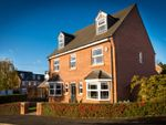 Thumbnail to rent in Carr Bridge Close, Eaglescliffe, Stockton-On-Tees