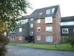 Thumbnail to rent in Bracken Park Gardens, Wordsley, Stourbridge