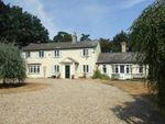 Thumbnail to rent in Kennett, Newmarket, Cambridgeshire