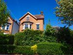 Thumbnail to rent in Blenheim Park Road, South Croydon