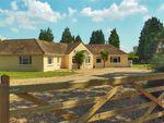 Thumbnail for sale in Southampton Road, Boldre, Lymington, Hampshire