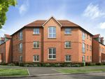 "Thumbnail to rent in ""The Piel Style 2"" at Norwich Road, Wymondham"