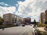 Thumbnail to rent in Portswood Avenue, Southampton