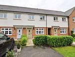 Thumbnail for sale in Clematis Drive, Garstang, Preston