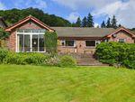 Thumbnail to rent in Llwyn Bedw, 2, Plas Hafren, Milford Road, Newtown, Powys