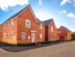 "Thumbnail to rent in ""Alderney"" at Crewe Road, Shavington, Crewe"