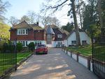 Thumbnail for sale in Beech Dell, Keston Park, Kent