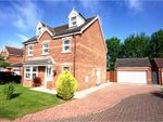 Thumbnail for sale in Buck Close, Lincoln