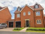 Thumbnail for sale in Freyberg Drive, Berryfields, Aylesbury