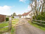 Thumbnail to rent in Wymondham, Norfolk, Norwich