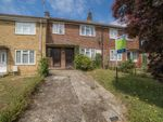 Thumbnail for sale in Montfort Close, Canterbury