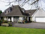 Thumbnail to rent in Dryslwyn, Carmarthen