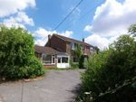 Thumbnail for sale in Hawthorn Road, Four Marks, Hampshire