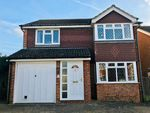 Thumbnail to rent in Grasmere Close, North Langney