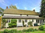 Thumbnail to rent in Cheriton Bishop, Near Exeter
