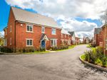 "Thumbnail to rent in ""Teddesley"" at Wedgwood Drive, Barlaston, Stoke-On-Trent"