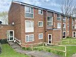Thumbnail to rent in Aston View, Hemel Hempstead