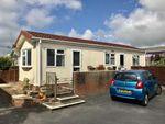Thumbnail to rent in Stoke Fleming, Dartmouth, Devon