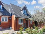 Thumbnail for sale in Belmont Place, Colchester
