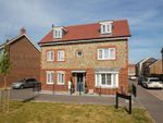 Thumbnail for sale in Bulbeck Way, Felpham, Bognor Regis