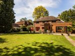 Thumbnail to rent in Horley Road, Charlwood