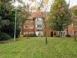 Thumbnail to rent in Greystones Drive, Darlington