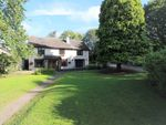 Thumbnail for sale in Ellwood, Coleford