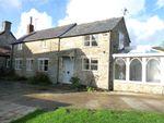Thumbnail to rent in Stourton Caundle, Sturminster Newton, Dorset