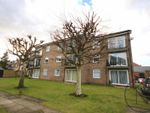 Thumbnail for sale in Westcliffe Court, Darlington