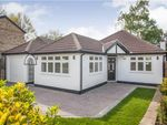 Thumbnail for sale in Edith Road, Orpington, Kent