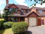 Thumbnail for sale in Mulberry Way, Hilton, Derby