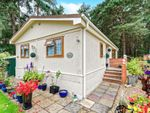Thumbnail for sale in Pinelands Mobile Home Park, Padworth Common, Reading