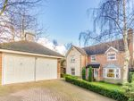 Thumbnail for sale in Harts Grove, Woodford Green