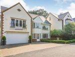 Thumbnail for sale in Brooke Close, Desborough