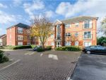 Thumbnail for sale in Blackthorn Close, Cambridge