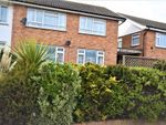 Thumbnail to rent in Holland Road, Holland-On-Sea, Clacton-On-Sea