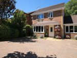Thumbnail for sale in Mayles Lane, Wickham, Fareham