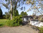 Thumbnail for sale in Station Road, Trusham, Newton Abbot, Devon