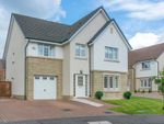Thumbnail to rent in Gadwall Grove, Motherwell
