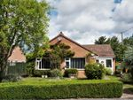 Thumbnail for sale in Oakwood Drive, Iwerne Minster