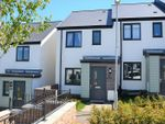 Thumbnail for sale in Hollyhock Way, Paignton