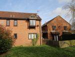 Thumbnail to rent in Rosewood Court, Hemel Hempstead